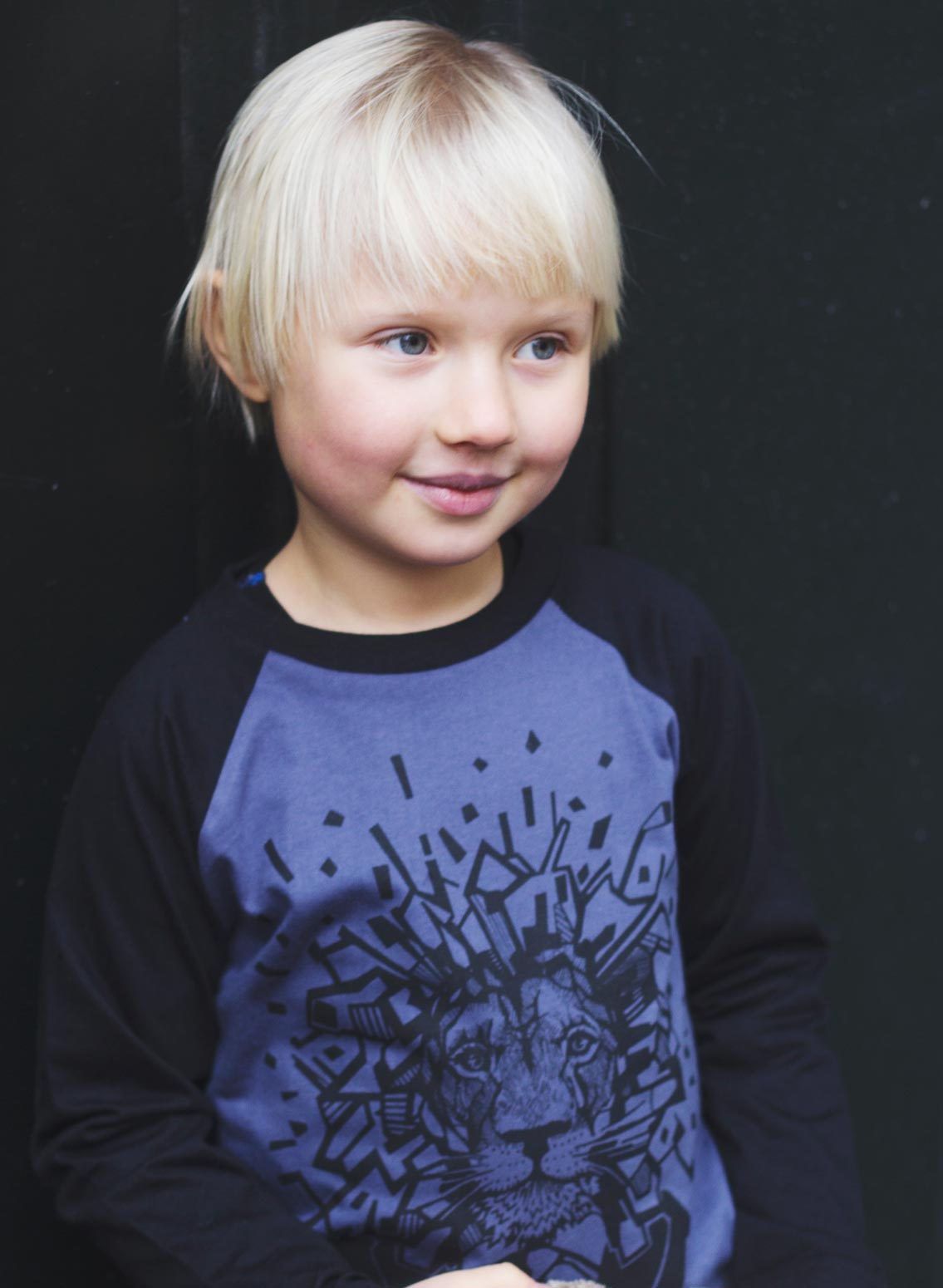 Bobo, øko, T-shirt, LS, gråblå/sort, løve